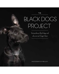 Quayside Publishing Race Point Publishing Books-The Black Dogs Project