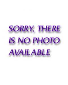 "The Northwest Company Lightning  Jersey 50""x60"" Raschel Throw"
