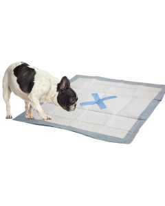 """Ethical Pets X Marks The Spot Puppy Pads 22""""X22"""" 30/Pkg-"""