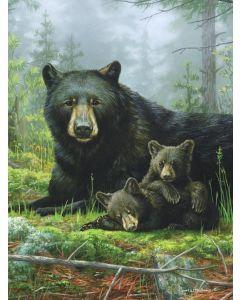 "The Northwest Company Hautman Bros. - Nap Time Bears Hautman Bros. 60""x 80"" Super Plush Throw"
