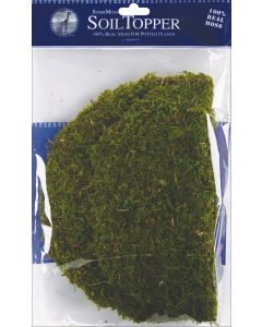 "Supermoss Moss Pot Toppers 10"" 3/Pkg-Green"